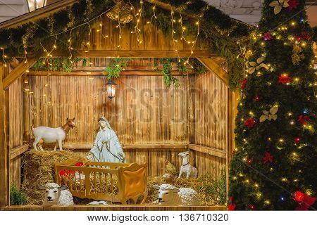 Nativity scene with Holy family of Mary and baby Jesus Christ, Christmas tree, sheep at night, Prague, Czech Republic
