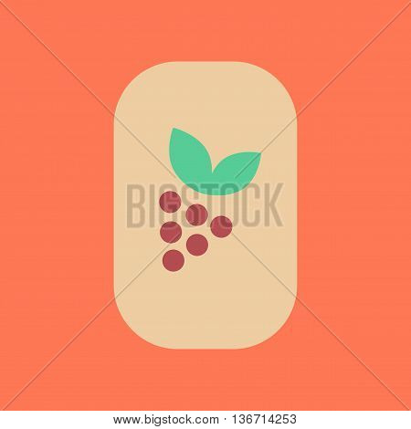 flat icon on stylish background poker grapes with leaf