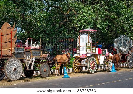 Horses Harnessed To The Carriage  In Kolkata, India.