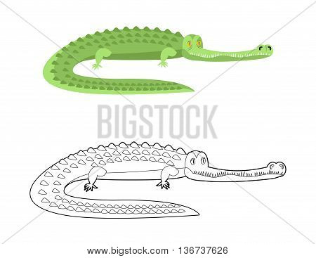 Crocodile Coloring Book. Good Caiman. Wild Animal. Green Reptile With Large Teeth. Alligator In Line