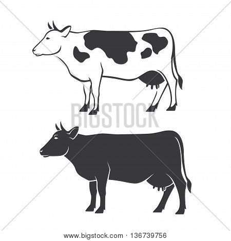 Two black cow silhouettes on white background in vector