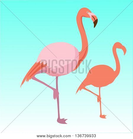 Pink flamingo bird  silhouette vector illustration set