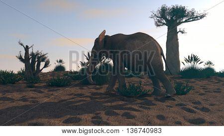 3d iluustration of the elephant walking near baobab tree