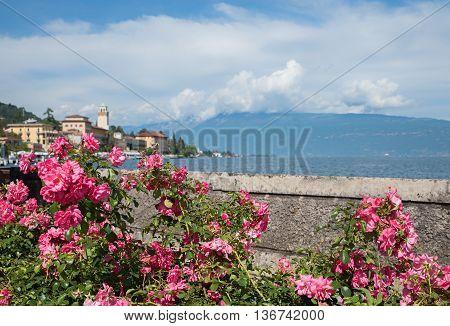 Lakeside Promenade With Pink Roses, Gardone Riviera, Garda Lake