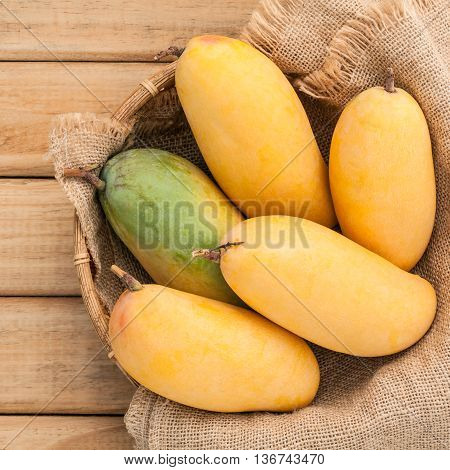 Fresh Organic Traditional Thai Mangoes High Vitamins And Minerals Set Up On Hemp Sack Background.