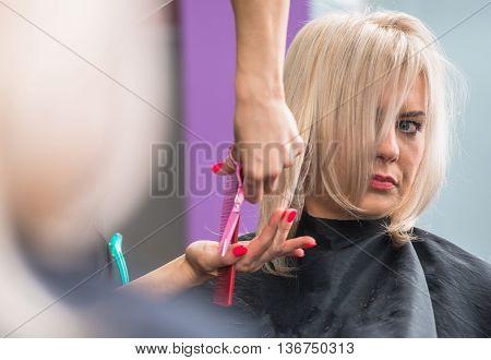 Blond Hair Woman Getting Hair Cut in the Beauty Salon.