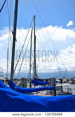 Sailboats at marina with sail covers all lined up