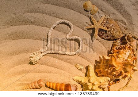 Summer Concept With Starfish And Seashells