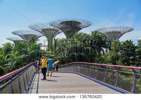SINGAPORE - MAY 7 2016 : tourists walk on Pedestrian walkway bridge in Garden by the Bay to see Supertree and the natural environment.