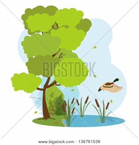 Wildlife scene. wild duck flying over the forest lake. vector