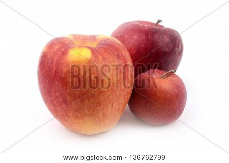 ripe delicious apples as part of the harvest season