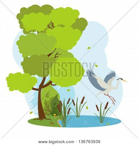 great heron flies over the pond. forest landscape with a lake and herons. vector.