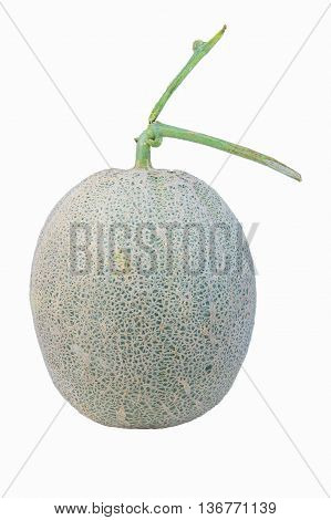 Melon cantaloupe fresh fruit  food healthy natural