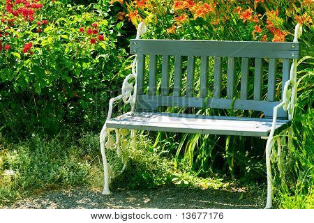 Lone Bench In The Park