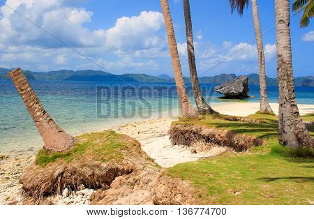The coast of the tropical island.  El Nido. Philippines.