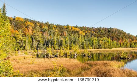 Autumn colors at Iargo Springs, on the AuSable Scenic Byway, in the Huron National Forest, near Oscoda, Michigan.