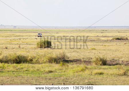 Savanna And Safari Car In Kenya