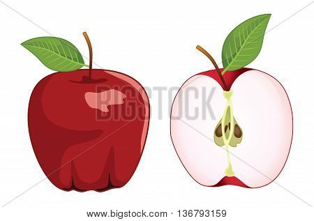 Red apple whole and half apple , vector set . Vector illustration
