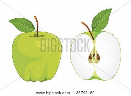 Green apple whole and half apple , vector set . Vector illustration