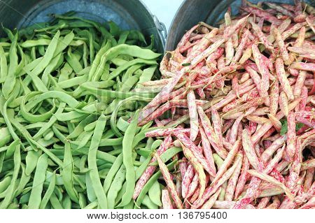 Fresh picked organic string beans displayed in an outdoor produce stand.
