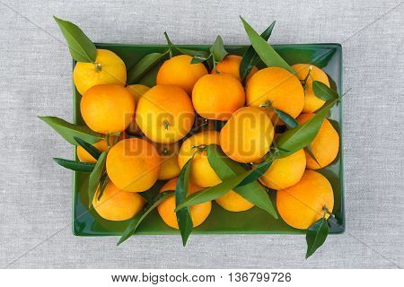 Fresh tangerines just plucked from the tree lie on a rectangular green plate and photographed from above