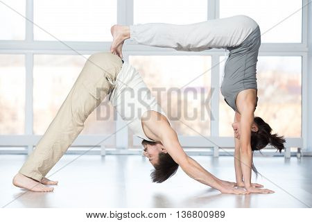 Fitness practice group of two beautiful fit young people working out in sports club doing stretching exercises together in class double downward facing dog yoga pose adho mukha svanasana