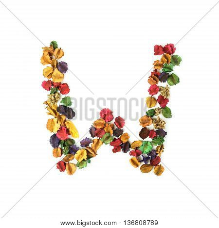 W Dried flower alphabet isolated on white background