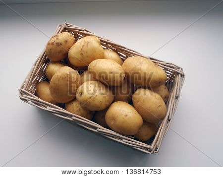 Potatoes - a perennial herb. Potato tubers are an important food product.