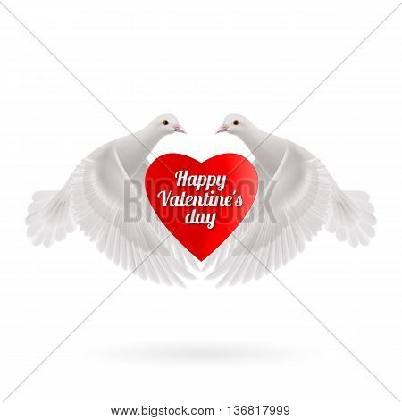 White two doves holds red heart in wings on white background