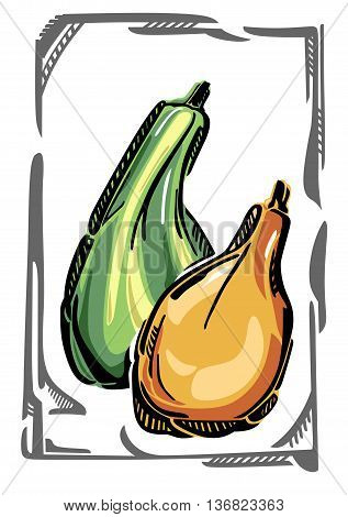 Two stylized vector gourds, in curvy gray frame.