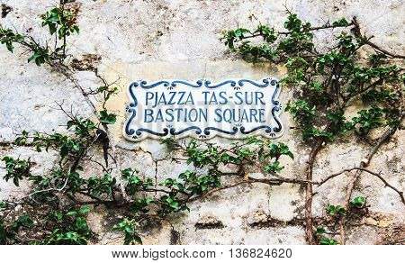 Traditional Maltese street name sign painted on ceramic tile placed on the stone wall entwined with climbing bush plant city of Mdina Malta