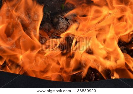 Blaze fire flame texture background.birch firewood burning in a metal brazier