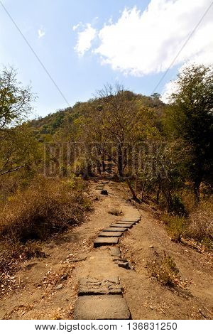 Path through a little hill during the komodo boat trip. Indonesia.