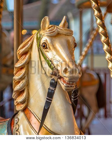Head Of Horse In A Merry Go Round