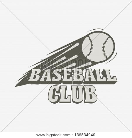 Baseball Logo, Badge Or Label Template. Baseball Ball With Fire Flame On Light Background