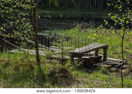 Old wooden walkways and a bench on the shore of a wild forest lake on a hot summer day.