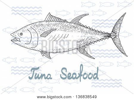 Fish hand drawn vector sketches. Vintage design with tuna illustration. Fishing and seafood background.