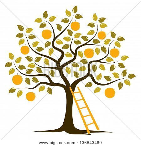 vector apple tree and ladder isolated on white background