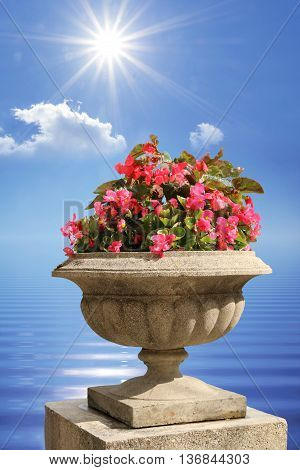 mediterranean flowerpot on a stone post against water and sky with bright sunshine