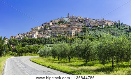 View of Trevi city with olive trees ( Umbria, Italy )