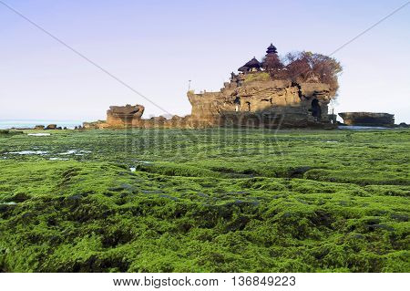 Mossy at Tanah Lot Bali Indonesia during low tide and with sunrise scenery.