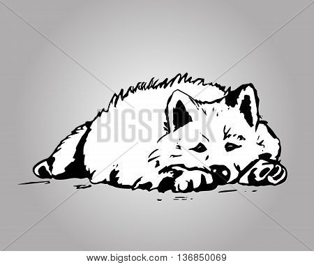 A graphical image of the white dog. Drawing of dog from the black lines the dog lying on the floor. Vector illustration