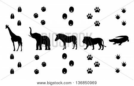 Vector set of walking safari animal tracks