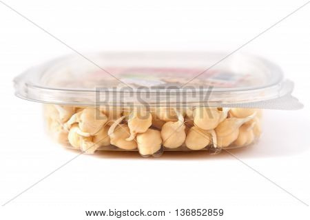 grains of germinated chickpeas in a closed container