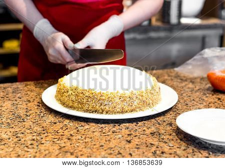 process of cooking homemade sponge cake with raisins decorating