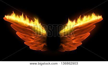 burning vector wings