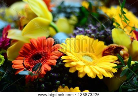 Floral background with a large arrangement of colorful summer flowers in rainbow colors,orchids and gerbera for celebrating a special occasion