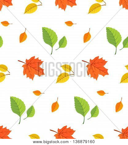 Seamless pattern of bright colored leaves. Vector illustration.