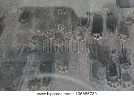 cat foot print on front car windshield