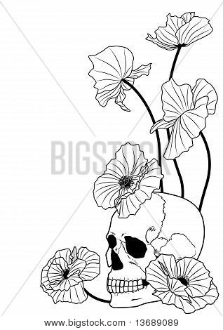 Skull And Poppies